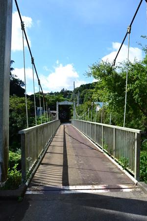 揺れる吊り橋@養老渓谷周辺 [8/16]