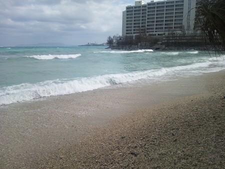 海とたくさんの貝@マリブビーチ [10/19]