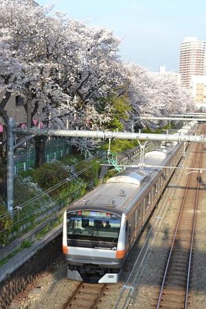 桜と中央特快(E233系0番台)@東中野-中野 [3/28]