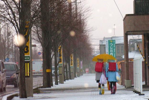 写真: ☆寒い朝