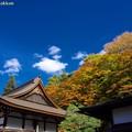 Photos: 百済寺