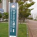 Photos: R0024009