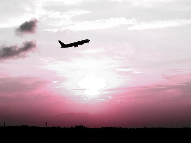 遥か空へ。