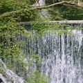 神戸の名瀑・布引の滝