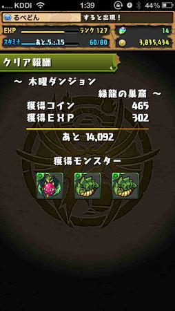 IMG_2309