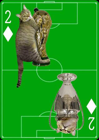 「トランプ猫」