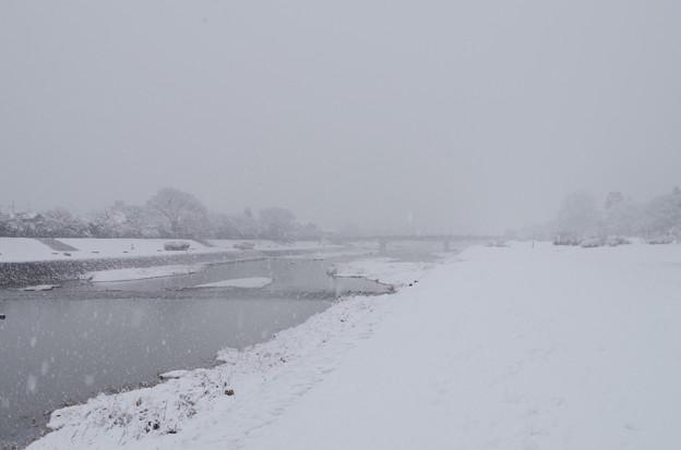 kamo river 9