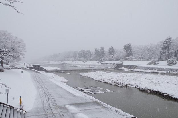 kamo river 17