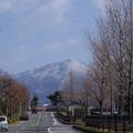 写真: 比叡山 雪化粧1
