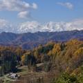 Photos: 小川村晩秋から初冬へ。