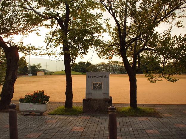 城端(『true tears』聖地)20120903_138