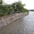 写真: 台風18号後の高野川 3