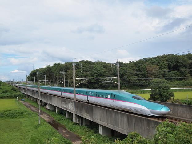 Photos: E5系はやて(東北新幹線 新白河~那須塩原)