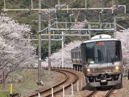 223系 紀州路快速 阪和線山中渓駅