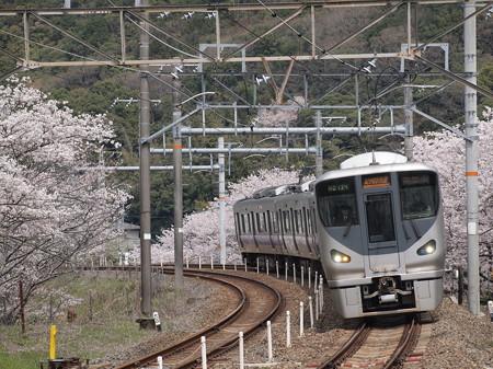 225系 紀州路快速 阪和線山中渓駅