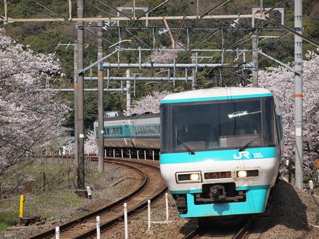 381系特急くろしお 阪和線山中渓駅