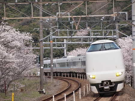 287系特急くろしお 阪和線山中渓駅