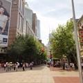 Photos: 真夏の上海 南京東路の木陰