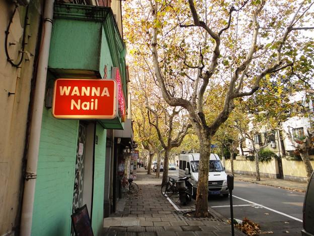 街路樹とネイル看板