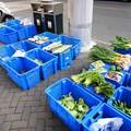 Photos: 延平路 路上の野菜売り