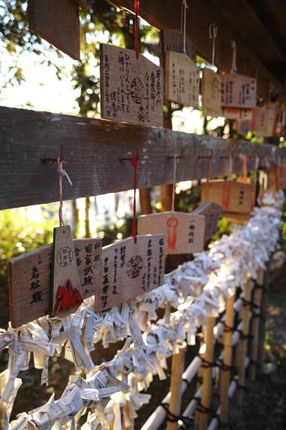 鎌倉フォトウォーク2012 - 杉本寺の絵馬