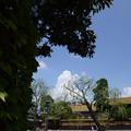 Photos: 2012.09.07 秋空に残る夏。