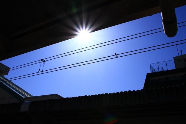写真: 今日の空と太陽
