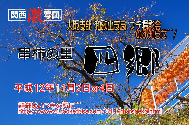 関西激写団in和歌山 串柿大作戦