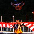 Photos: 飛びます飛びます