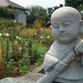 Photos: お墓参り