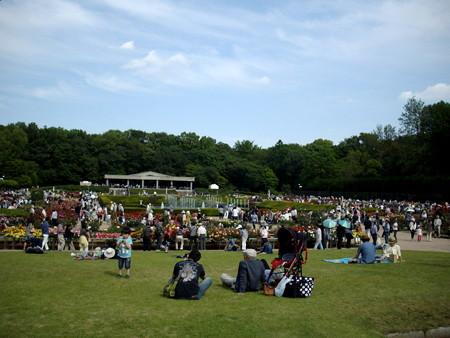 神代植物公園_ばら園-27芝生でのんびり