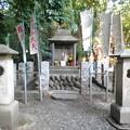 Photos: 泉龍禅寺(狛江)_弁財天-01