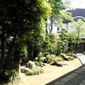 Photos: 西照寺-04