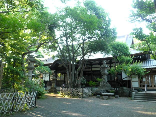 泉龍禅寺(狛江)-06本堂a