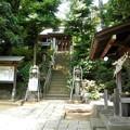 Photos: 糟嶺神社(入間町)-02参道・手水舎・拝殿