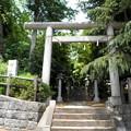 Photos: 糟嶺神社(入間町)-01鳥居・参道