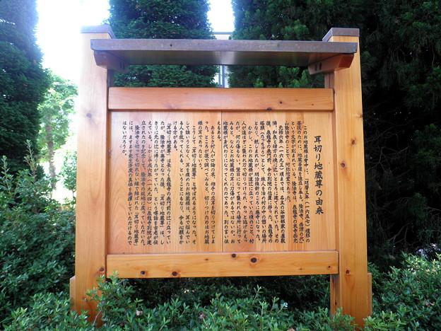 Photos: 泉龍禅寺別院(狛江)-01耳切り地蔵INFO