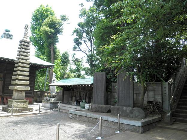 明照院(入間町)-04聖観世音菩薩像・六地蔵・石碑b_十三石塔・観音堂(左)
