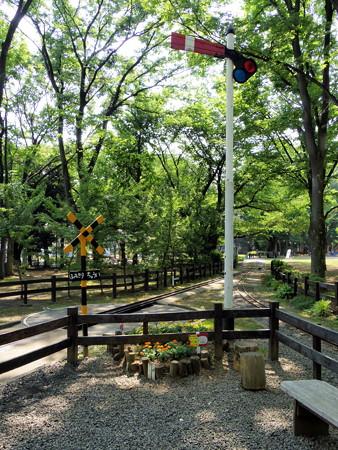 世田谷公園-05