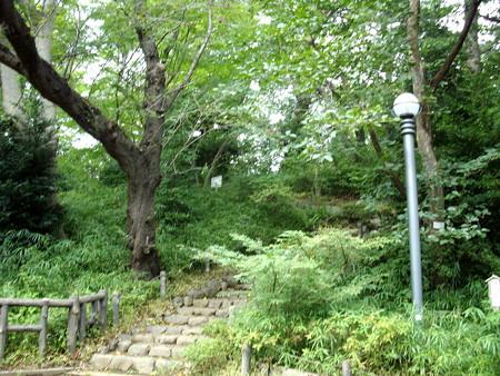 多摩川台公園-04