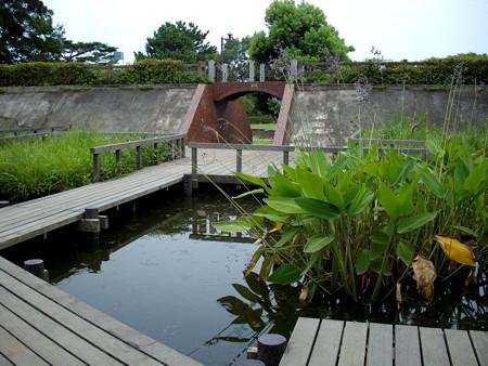 多摩川台公園-09水生植物園・野草園(元調布浄水場跡地)b