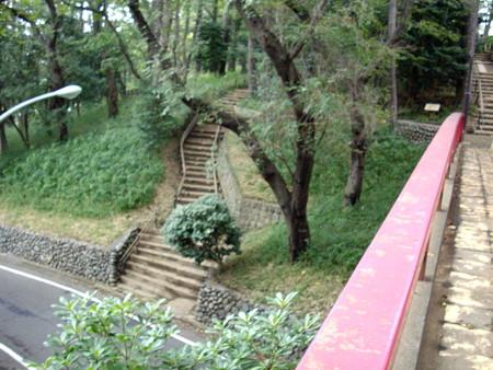 多摩川台公園-07虹橋b