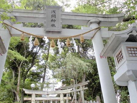 浅間神社-02b鳥居>鳥居>鳥居>鳥居