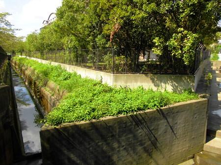 玉翠園と六郷用水入口
