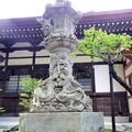 Photos: 泉龍禅寺(狛江)-06本堂d2