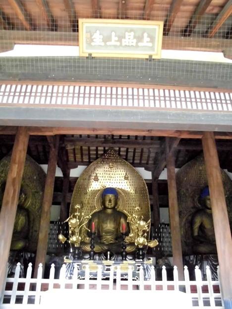 九品仏-15三仏堂(中央):上品阿弥陀如来像a上品上生(2)