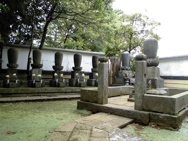 九品仏-19墓地b