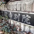 Photos: 泉龍禅寺別院(狛江)c