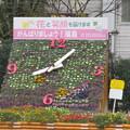 写真: 福島駅前の花時計