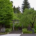 写真: 大崎八幡宮・二ノ鳥居